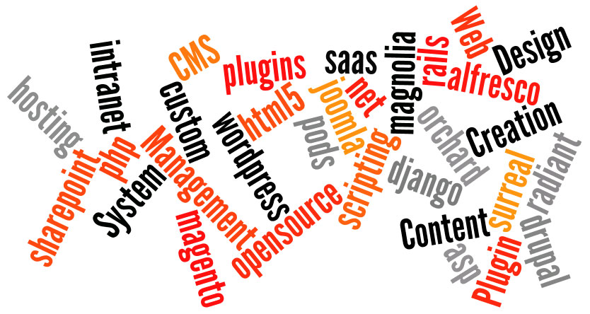 CMS Plugin Creation Web Design Content Management System asp magento php plugins wordpress joomla scripting drupal custom rails hosting opensource alfresco intranet sharepoint orchard html5 net saas django pods magnolia radiant surreal