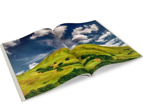 What Are 10 Things That Can Make a Brochure Interesting?